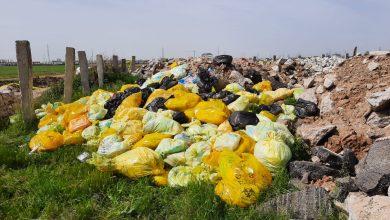 """Photo of Ce s-a stabilit la ședința pentru gestionarea problemei deşeurilor din București. Ministrul Mediului: """"Capitala este captivă deșeurilor"""""""