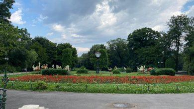 Photo of Povestea parcului Cișmigiu. Știați că aici a existat o grădină zoologică?