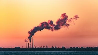 Photo of Combaterea poluării în București. Primăria Capitalei continuă elaborarea unui nou Plan Integrat de Calitate a Aerului