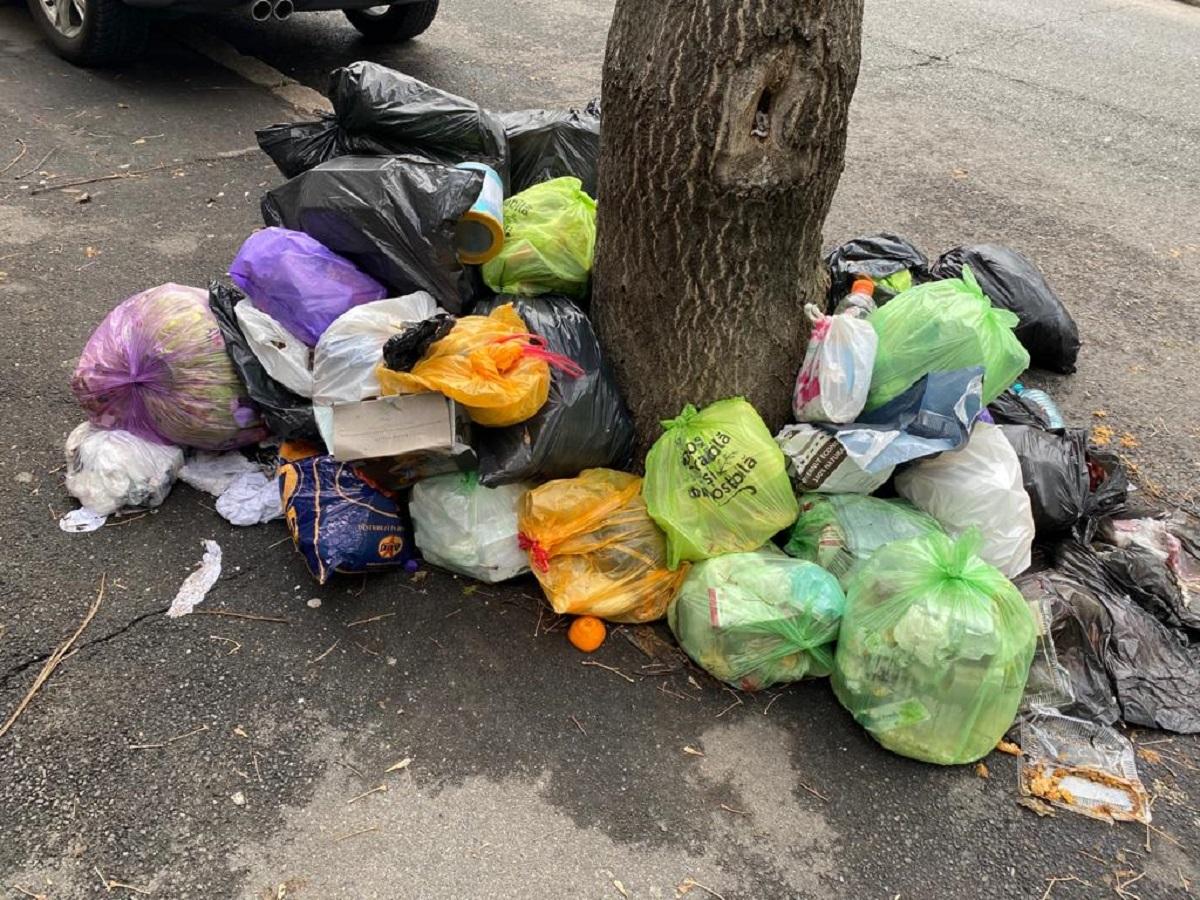 După ce cunoști cel mai bogat sector din București? După mirosul de gunoi! Șeful Gărzii de Mediu: N-am văzut niciodată orașul așa de murdar