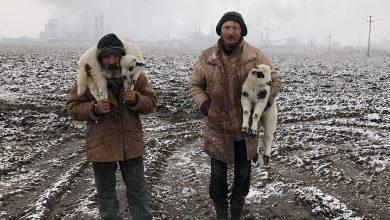 Photo of Un fotograf de origine română a câștigat concursul iPhone Photography Awards. Ce imagine i-a adus acestuia marele premiu