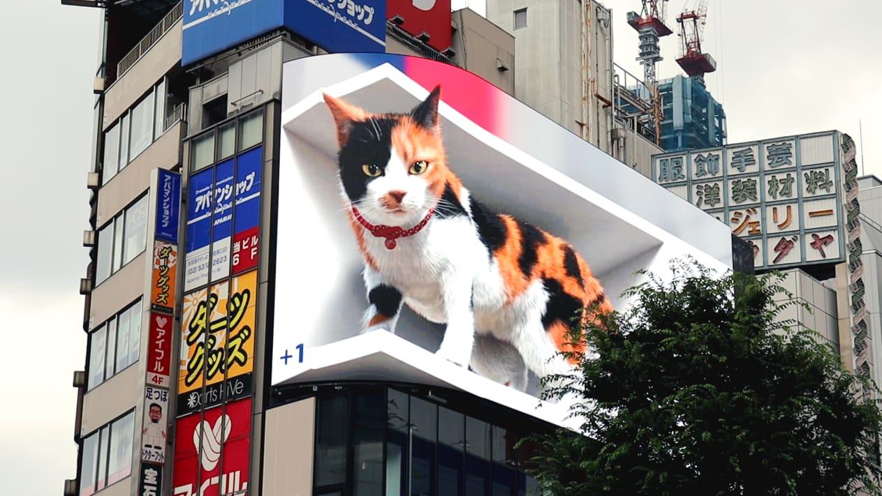 pisică 3D gigant din Japonia
