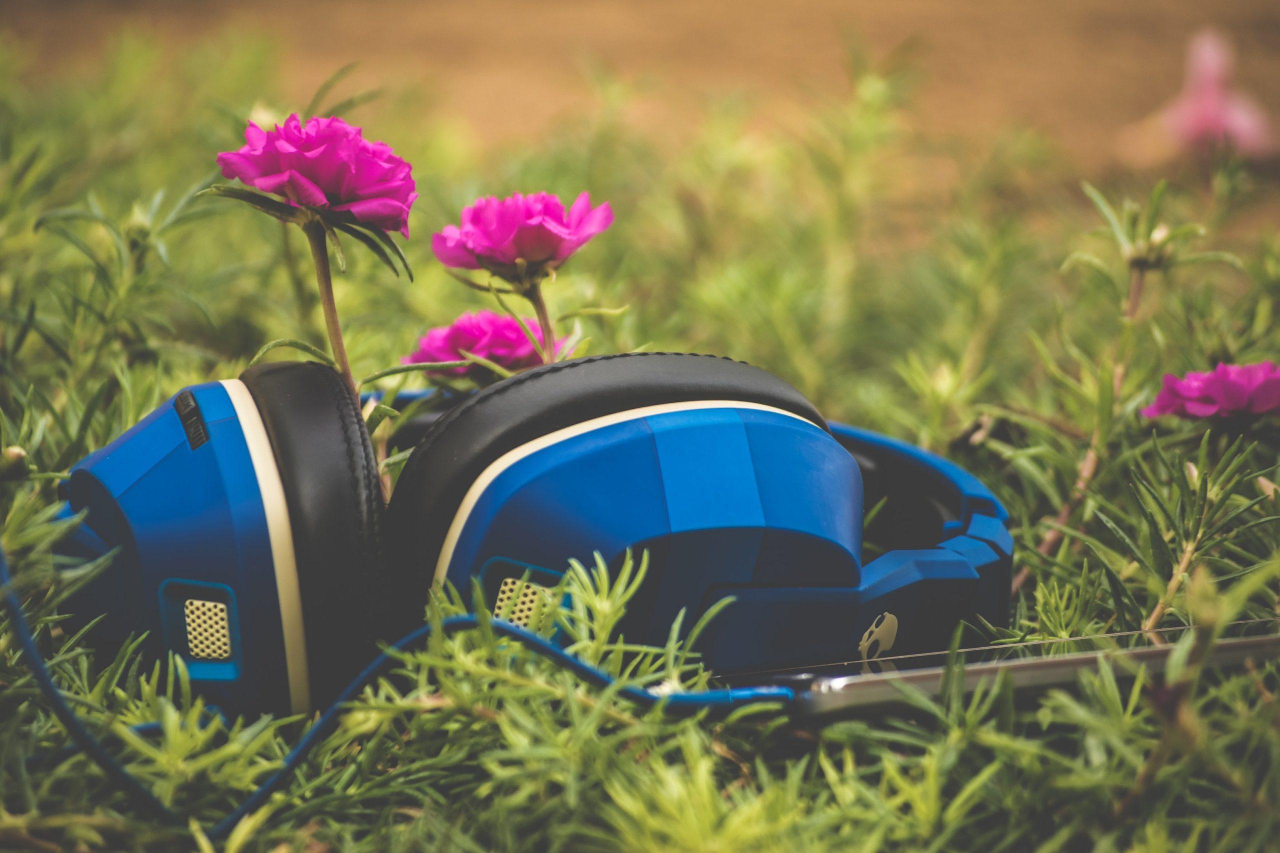 Seri de vară muzicale în Parcul Romniceanu