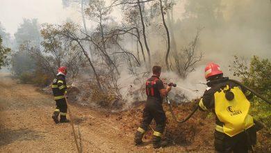 Photo of Pompierii români sunt apreciați pentru eforturile lor din Grecia. Aceștia primesc laude, admirație, dar chiar și vacanțe, în semn de recunoștință