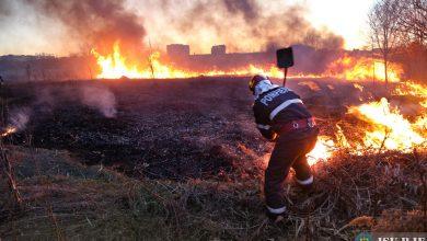 Photo of BREAKING | Incendiu de vegetație în Popești-Leordeni. Degajări mari de fum aproape de Centura Capitalei