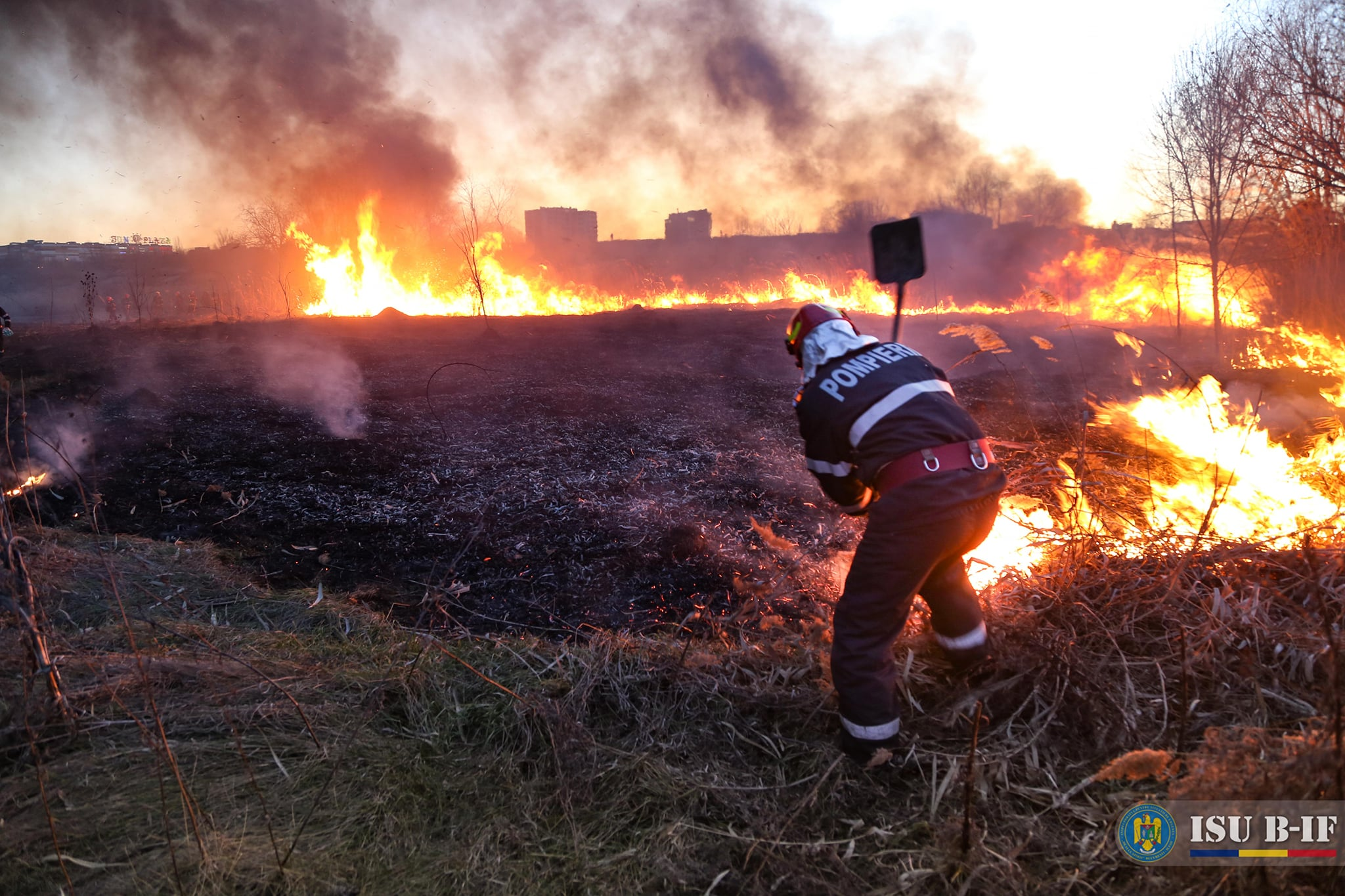 BREAKING | Incendiu de vegetație în Popești-Leordeni. Degajări mari de fum aproape de Centura Capitalei