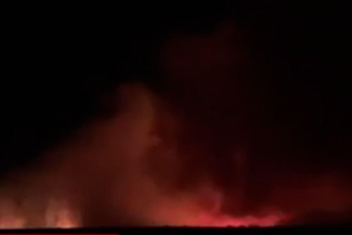 A fost incendiu de vegetație azi-noapte lângă București. Un fulger a aprins miriștea din Corbeanca   FOTO
