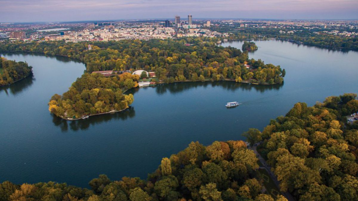 Clotilde Armand a vrut să ia parcul Herastrău în administrarea S1 și ar fi investit 10 milioane de euro doar în defrișari și replantări, dar proiectul i-a fost respins