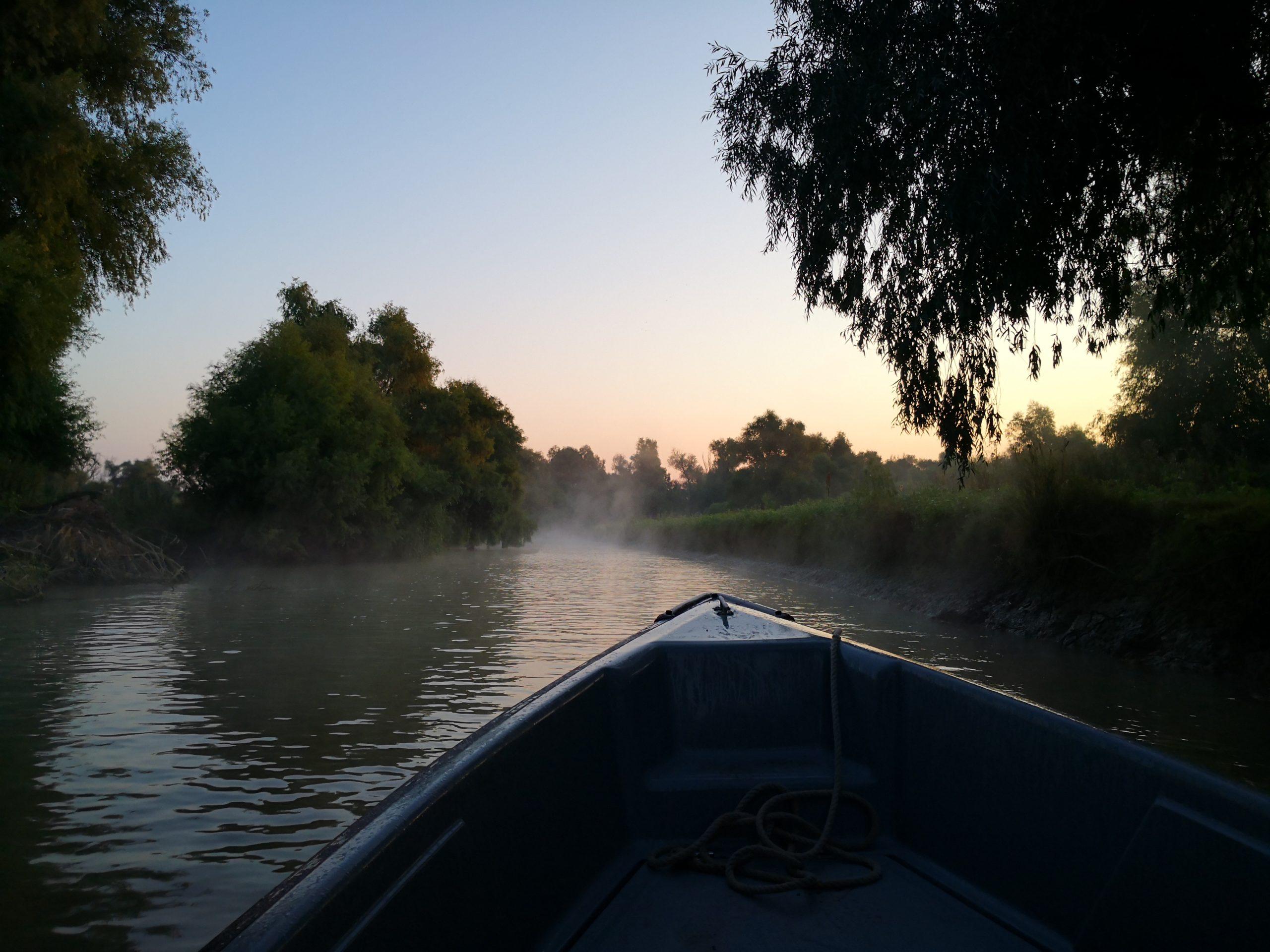 Pește așteptări. Am mâncat pentru tine în Delta Dunării storceag, borș de pește, scrumbie la grătar și pepene de baltă
