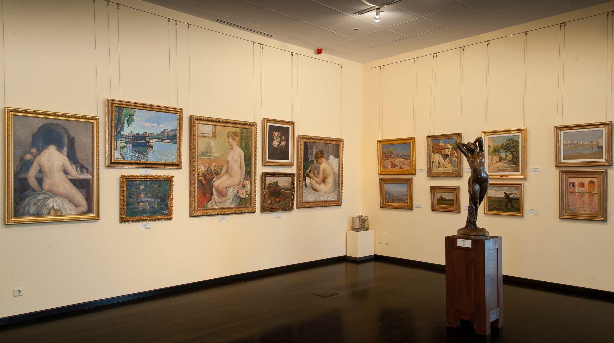 colectia, simu, muzeul, de arta