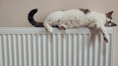 Photo of Probleme cu căldura în București și iarna asta. Care va fi cea mai afectată zonă
