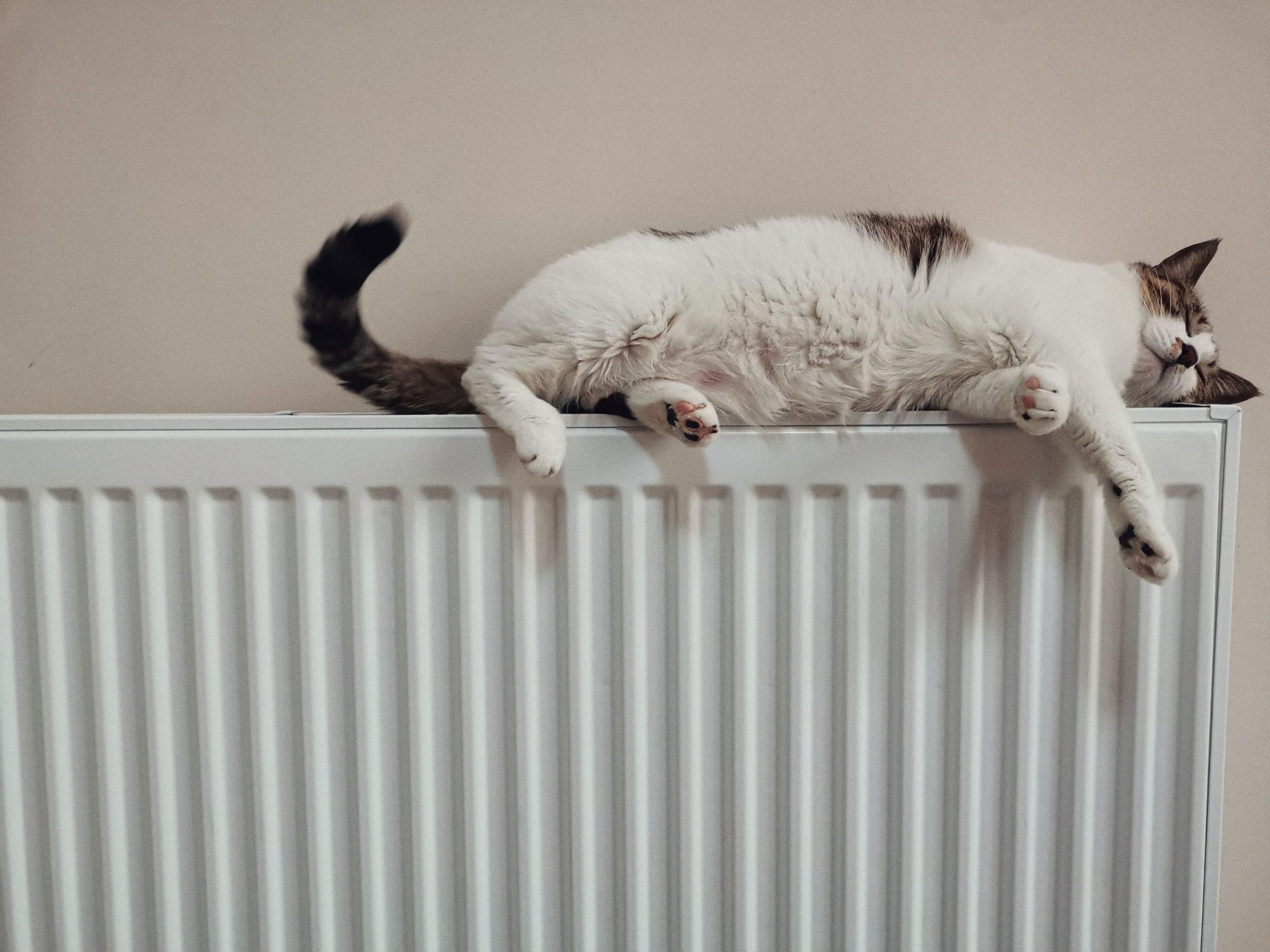 Probleme cu căldura în București și iarna asta. Care va fi cea mai afectată zonă