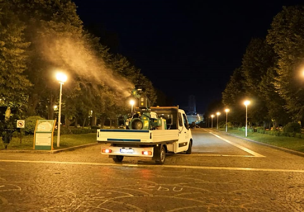 Adio bâzâitori. Primăria Capitalei începe al 10-lea tratament de combatere a țânțarilor