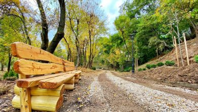 Photo of Apare un nou parc în București. E sora mai mică a Deltei Văcărești