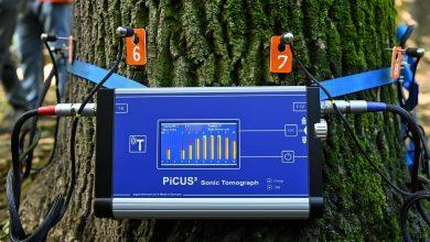 Photo of Copacii din Sectorul 4 sunt consultați zilele acestea, însă nu cu stetoscopul, ci cu tomograful. Cum funcționează tehnologia adusă în premieră în București